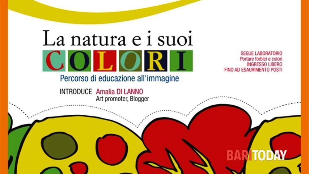 La natura e i suoi colori percorso di educazione all - Immagine di lucertola a colori ...