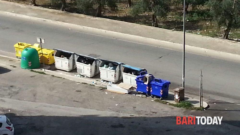 Loseto, spazzatura abbandonata fuori dai bidoni ...